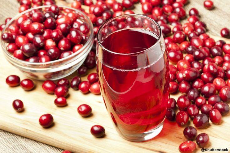 Propriétés médicinales du cranberry ou canneberge, Vaccinium macrocarpon - Remèdes naturels contre les infections urinaires et les ulcères gastriques.