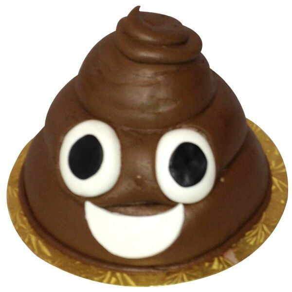 Poop Cake on Pinterest | Gross Cakes, Toilet Cake and Drum Cake