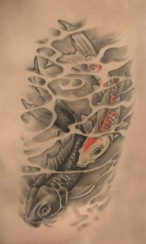 Google Image Result for http://www.mytattooink.com/images/koi-tattoo.jpg