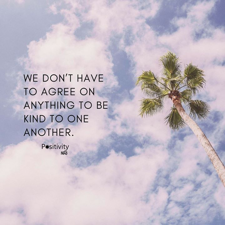We dont have to agree on anything to be kind to one another. #positivitynote #quote