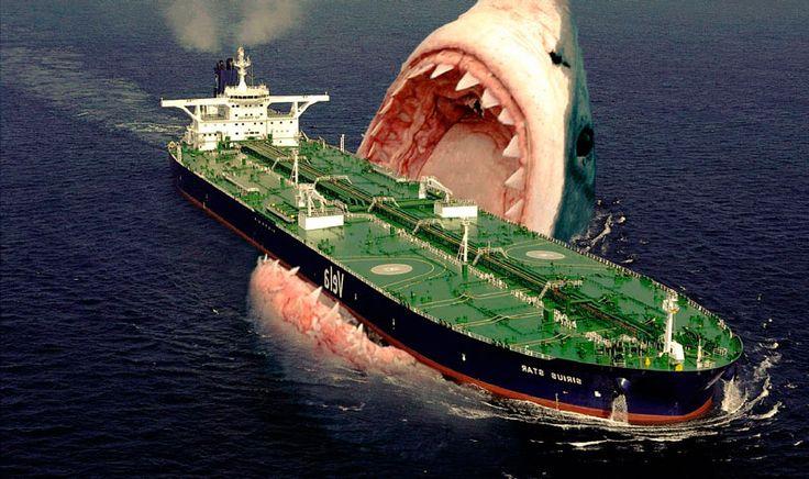 O famoso megalodon é classificado como o maior tubarão que viveu nas águas da Terra, além de ser um dos maiores vertebrados da história do planeta.