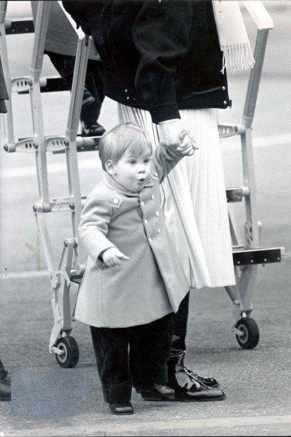 Vilmos és Harry herceg írtó cuki gyerekkori fotói (cute)