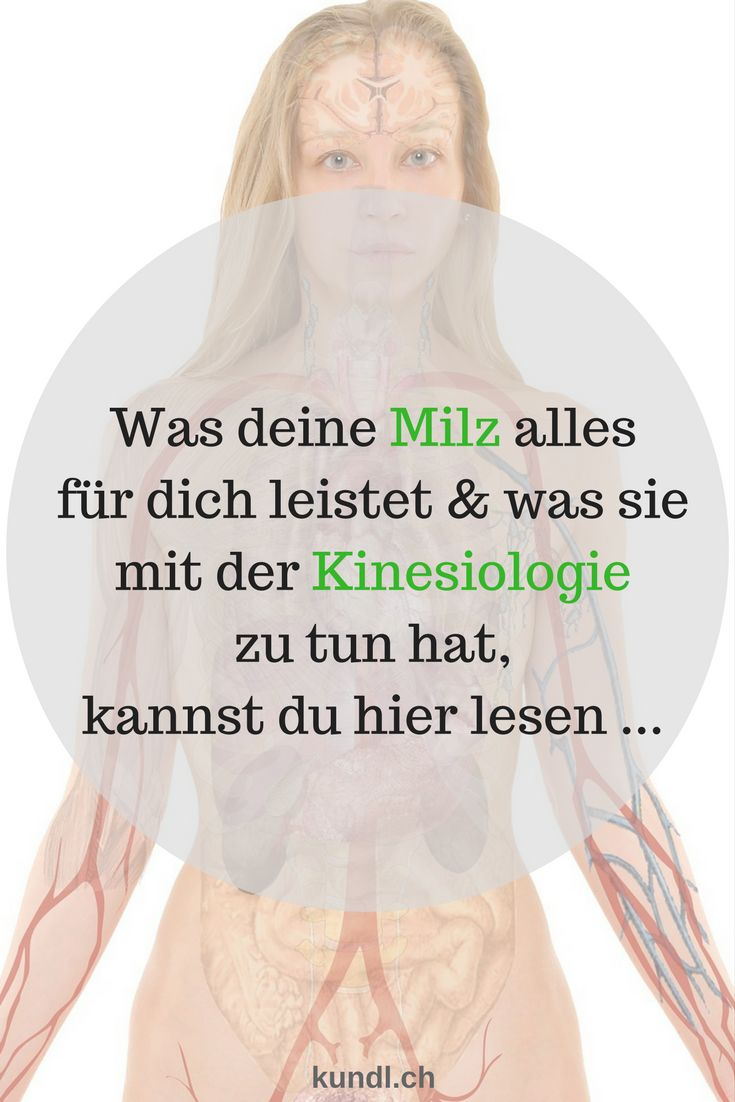 128 besten Anatomie & Physiologie Mensch Bilder auf Pinterest ...