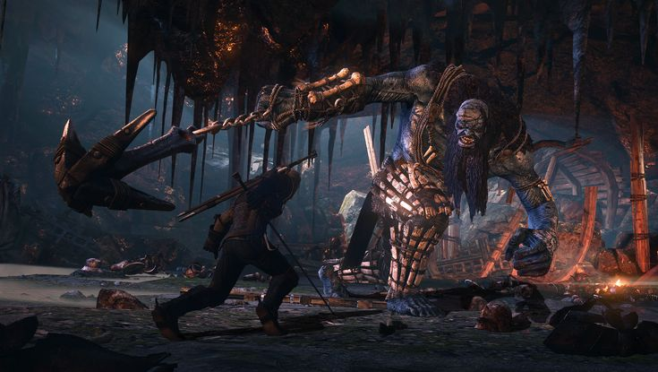 the witcher game | ... RED: Single-Player Only, DRM 'Worst Thing' In Video Game Industry