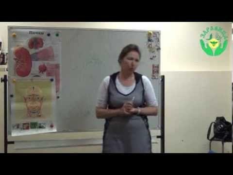 Мочеполовая система (почки) видео лекция Гуреевой О.Е. (УОЦ Здравица, Иж...