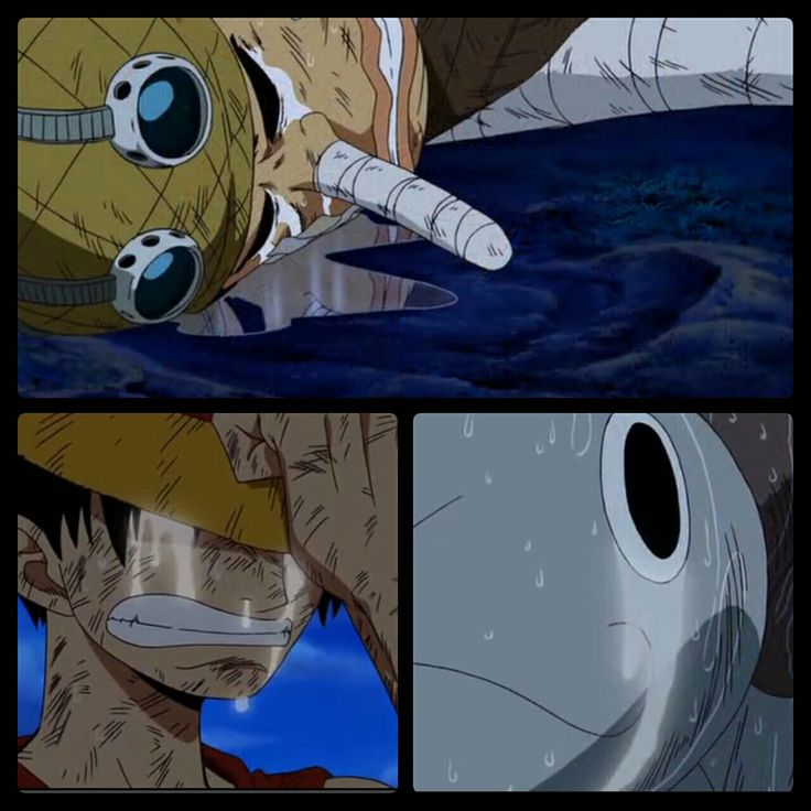 Usopp, Luffy, Going Merry, sad, crying, battle, One Piece; Photo Collages