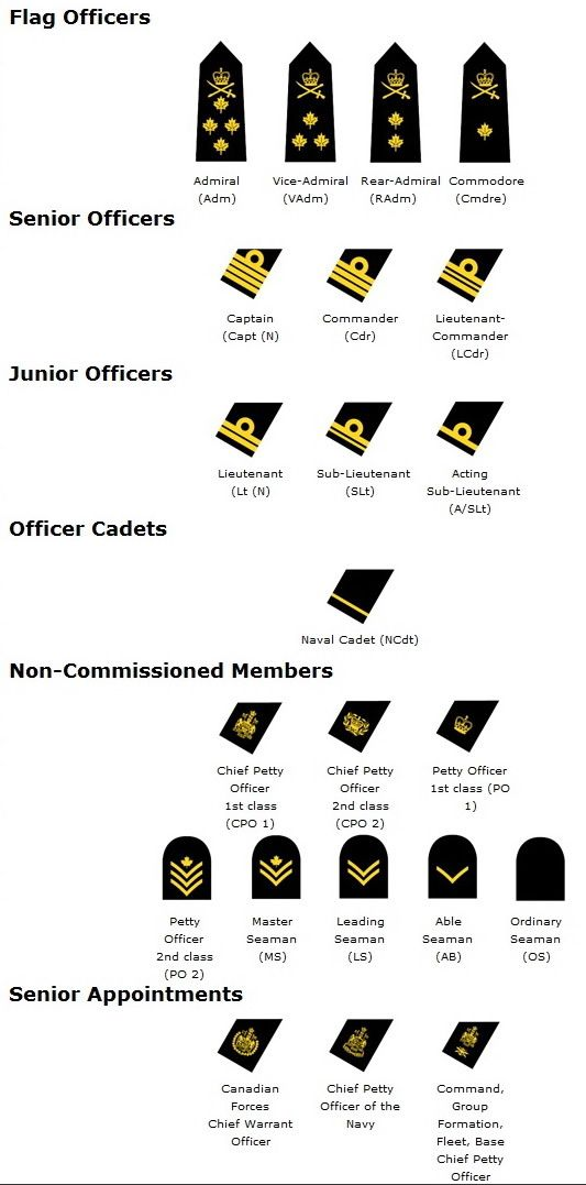 rank structure chart for the Royal Canadian Navy - return of the executive curl, 2010