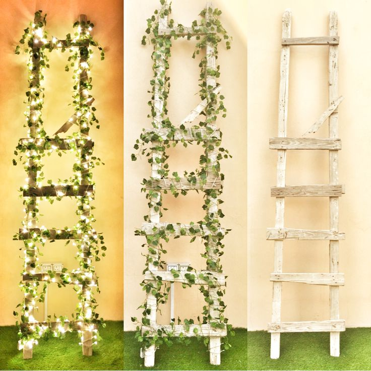 Garden ladder Old wooden ladder change, By adding a small LED lighting and Green tree leaves ..