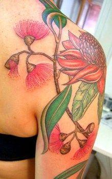 Australian flowering gum, waratah and eucalyptus botanical tattoo