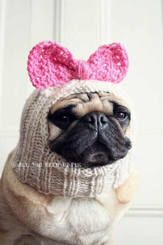 Pug Balaclava Knitting Pattern : The 175 best images about Crochet and knit for pets on ...
