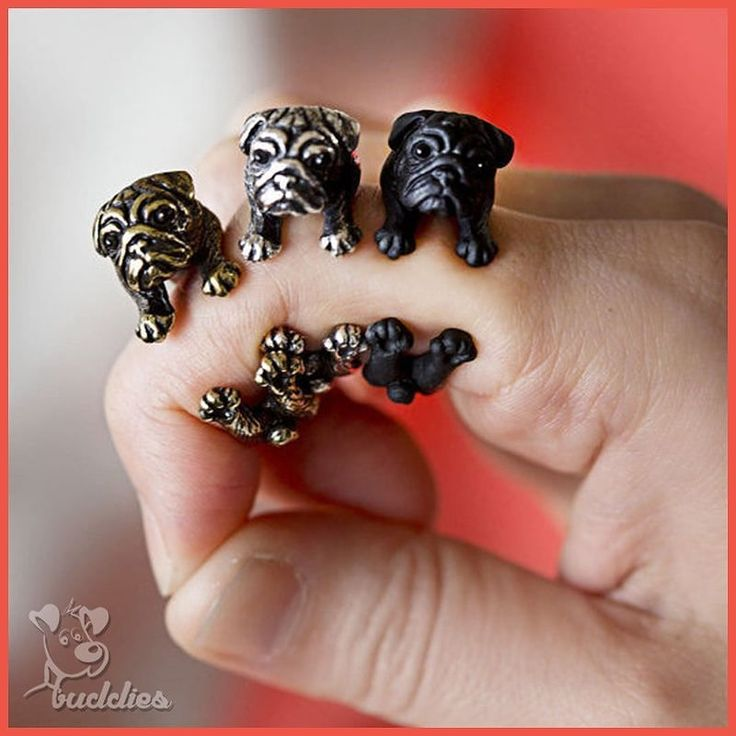 $4.00 With all my pokes and pins for you to get PIT BULL RESIZABLE RING FOR FREE...you seem least interested.... and you seem to lose out on many offers of mine. But still I care and love Pit Bull so for the sake of my love for Pit Bull Last Offer The original price for this ring is $10.95 for the last time I am giving it away for $4.00. P.S--> This is my last offer after this no more offers on this ring. 1.Go to my Bio Click on the Link 2.Last time to Claim the offer. 3.Hurry this offer…