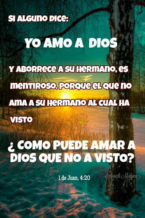 1 de Juan, 4:20 - Si alguno dice: Yo amo a Dios, y aborrece a su Hermano, es mentiroso. Porque el que no ama a su Hermano al cual ha visto, ¿cómo puede amar a Dios que no ha visto?