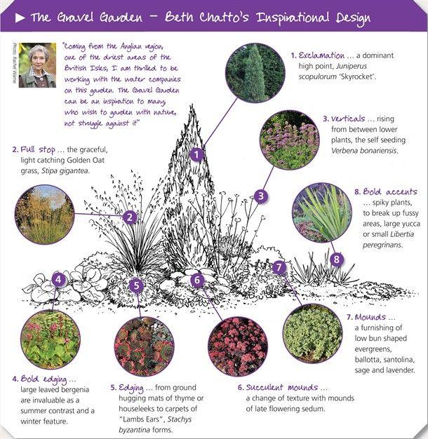 beth chatto gravel garden - Google Search