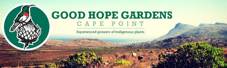 goodhopegardensnursery.com - Fynbos Foraging Course For Adults