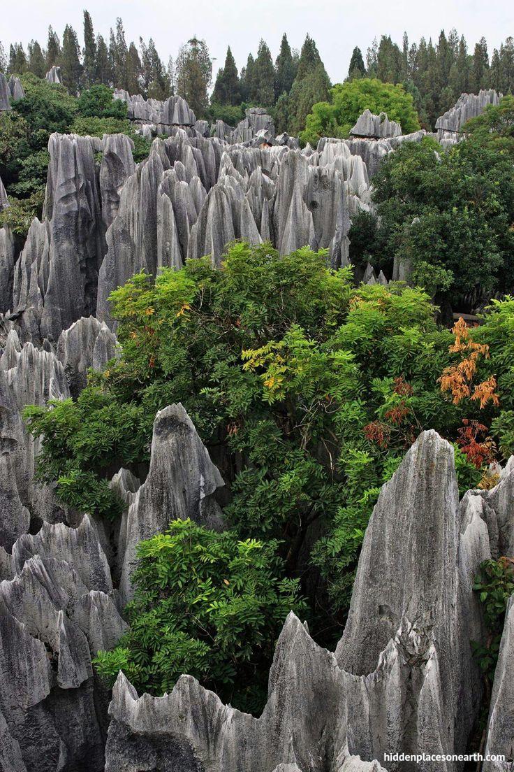 Shilin Stone Forest, Kunming, Yunnan, China