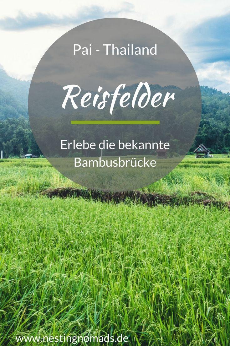 Bambusbrücke im Reisfeld in den Bergen Thailands. Unternehmungen in Pai Thailand mit Kindern, Reisfelder erleben in voller Blüte. #pai #thailand #nordthailand #bambusbrücke #reisfelder #kinder #reisen #familienreisen