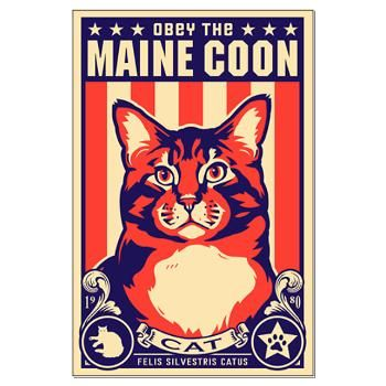 maine coons rule!