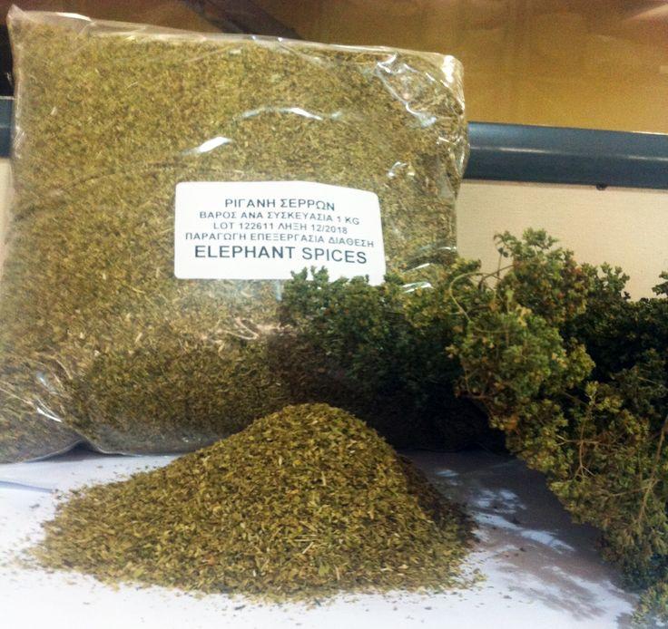 Greek Oregano fresh and dried