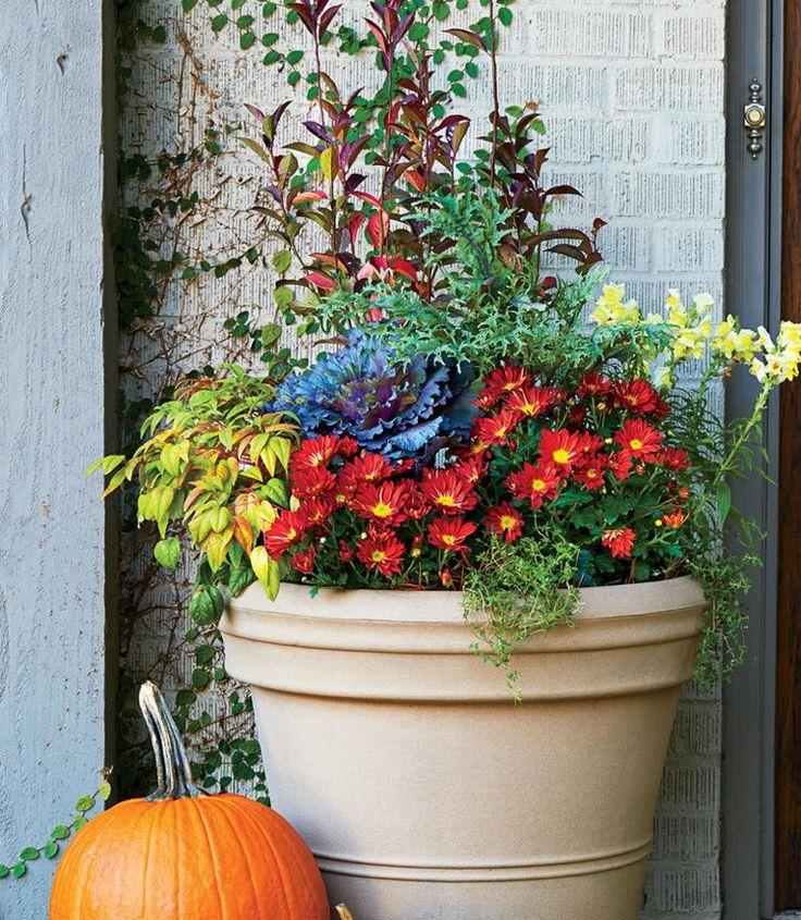 Beautiful Herbstbepflanzung vor der T r K bel rote Chrysanthemen L wenm ulchen