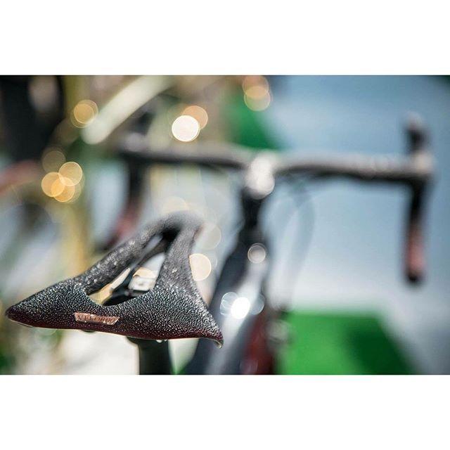 Veloboo Naja road bike