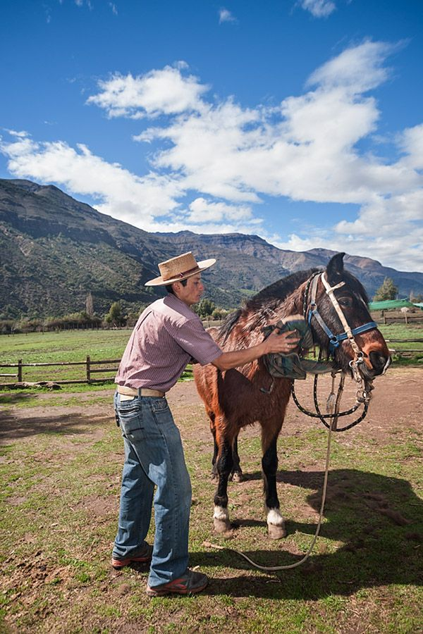 Horse farm in El Toyo region of Cajon del Maipo, Chile, South America. Victor cleans the horse in preparation for their trip into the mountains. Photos by Kim Walker - http://www.uniquetravelphoto.com/?p=2221