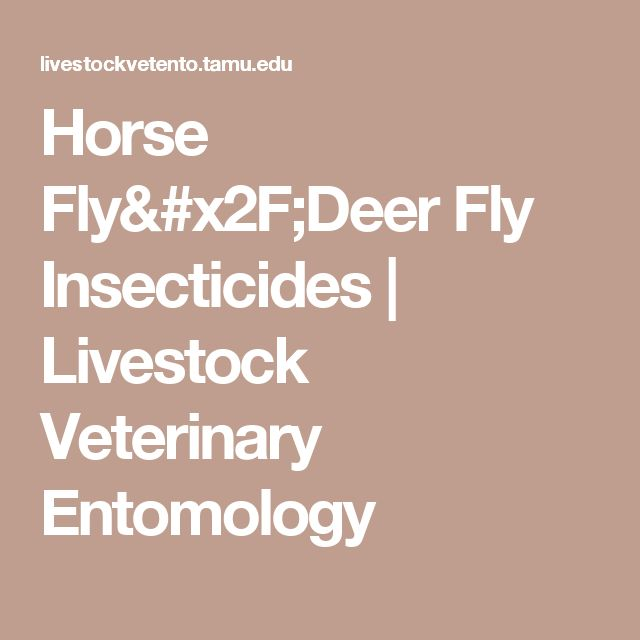 Horse Fly/Deer Fly Insecticides | Livestock Veterinary Entomology