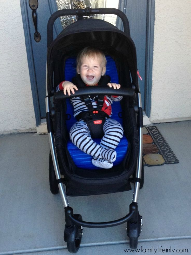 Phil Amp Teds Smart Lux Stroller Review Our Knight Life