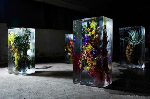 """Iced Flowers by Makoto Azuma  Self-professed """"botanic artist"""" Makoto Azuma's exhibition Iced Flowers features a stunning arrangement of exotic flowers trapped in large blocks of ice. By displaying the floral bouquets in an unconventional way, Azuma hopes to change our perspective on how we preserve and showcase the beauty of flowers. Although the installation was a temporary design, the artist made sure to capture images of its surreal and obscure beauty. View the assembling of Iced Flowers…"""