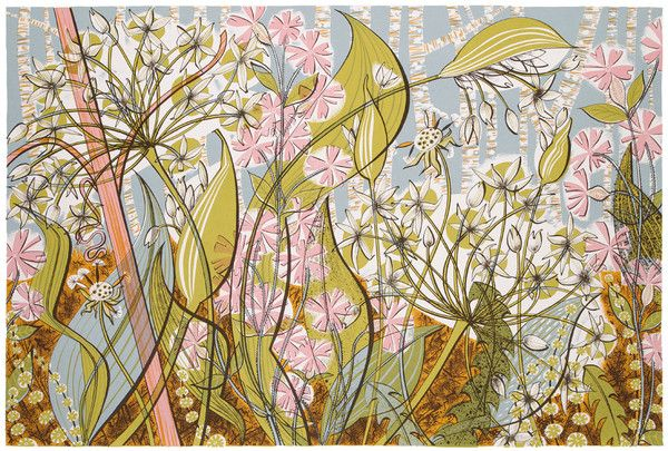 Angie Lewin Printmaker. Ramsons  Campions