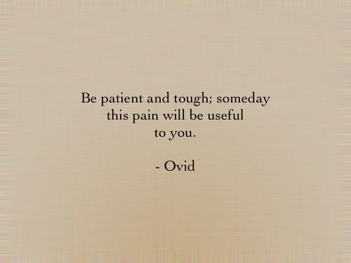 "I render this such: ""Be patient and tough; at some stage this suffering will serve you."" - Ovid"