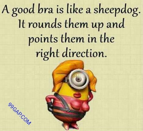 Funniest Jokes Collection By The Minions