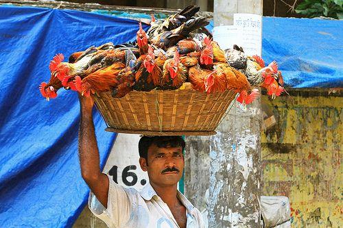 A chicken vendor in Kuakata, Bangladesh.