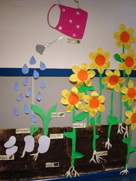 Plant Growth Board - A cool idea for spring science bulletin board in April. 25 Creative Bulletin Board Ideas for Kids, http://hative.com/creative-bulletin-board-ideas-for-kids/,