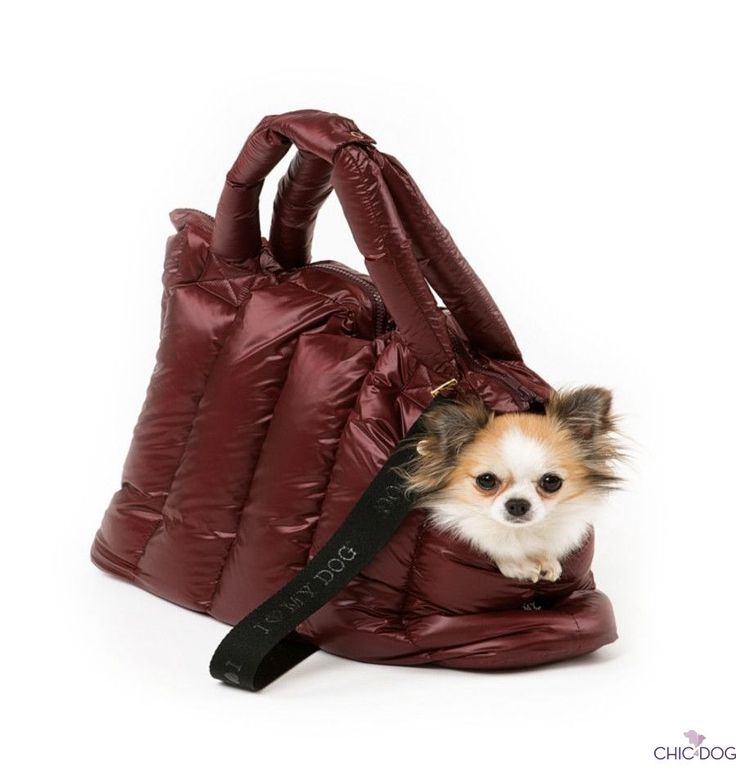 Nylon Superlight #dogbag by I Love My Dog - soft and light #dogbag for the cold winter   Borsa in tessuto di nylon per cani disegnata da I Love My dog