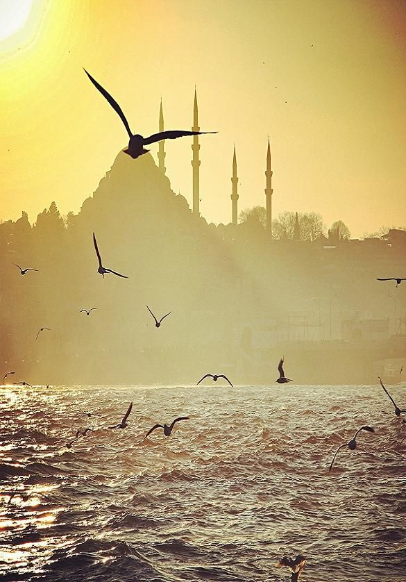 Istanbul Istanbul, our destination for October with Trips for Photographers, registration is open and no. of vacancies is limited. You are invited to enter and register now :) trips4photographers.com/destinations/istanbul/