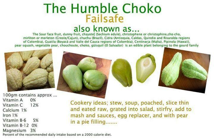 Choko, chayote squash, vegetable pear