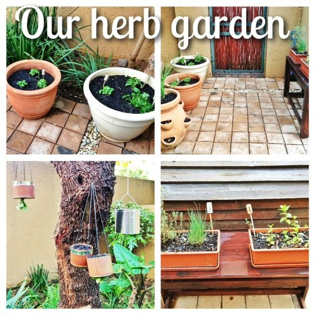Our herb garden - karenandtracey.tumblr.com