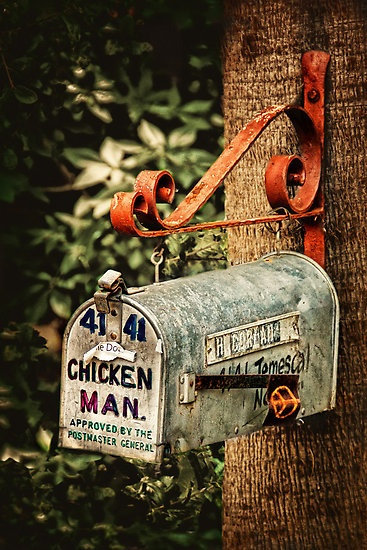 What a darling idea for Great Aunt Mildreds Mailbox.  Attached to my greenhouse with my gloves and garden tools in it!
