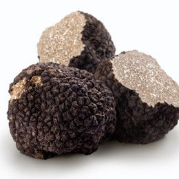 Black Summer Truffles of Tasmania