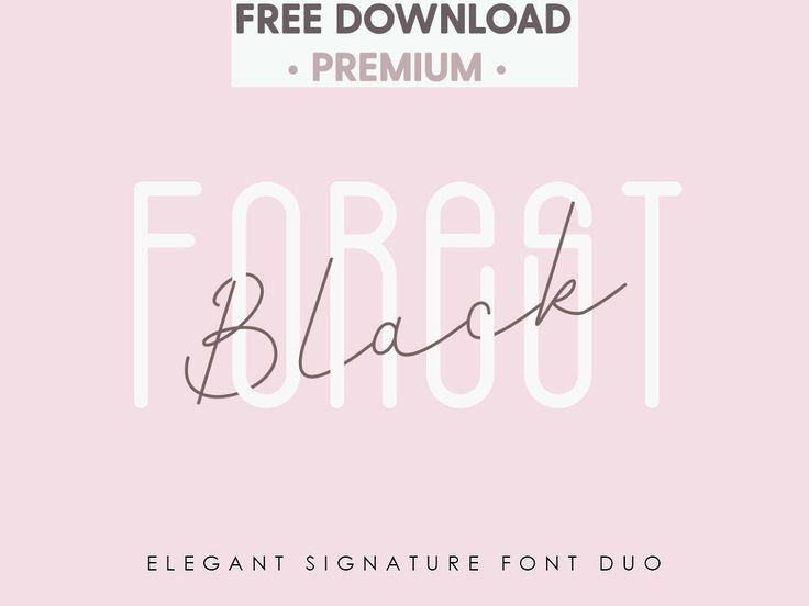 Download Free Download - Black Forest l Elegant Font Duo signature ...