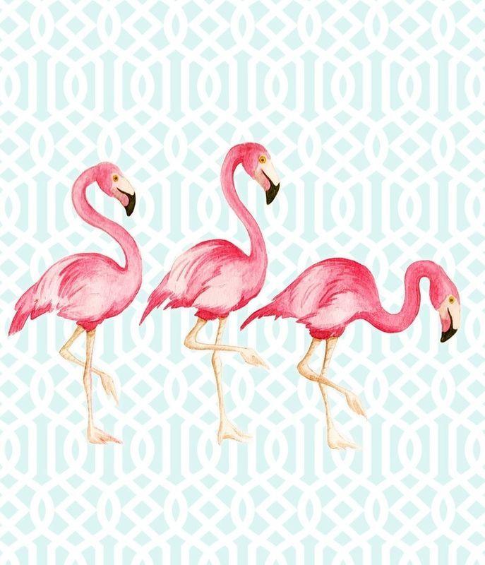 poster flamingo - Dulce Amor