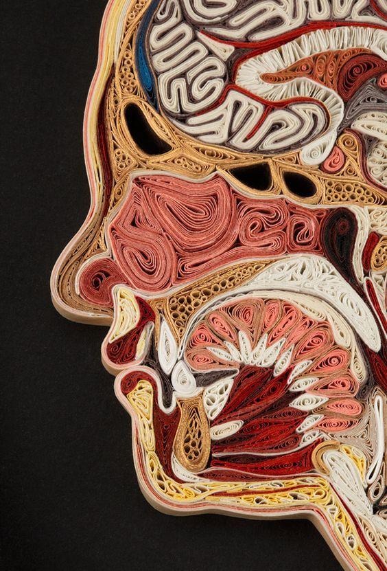 Was sagt man dazu: anatomische Querschnittsmodelle, gemacht mit unterschiedlich farbigem, aufgerollten Origami-Papier. Ob nun seitlicher Oberkörper, Gehirn oder Torso – die Künstlerin Lisa Nilsson nimmt sich ihre Zeit, in diesem Falle jeweils mehrere Wochen. Als Vorlage dient ihr zunächst ein Foto, dann beginnt sie nach Farbe zu sortieren, zu rollen und zu stecken – selbst der Holzrahmen ist eine Eigenanfertigung.... Weiterlesen