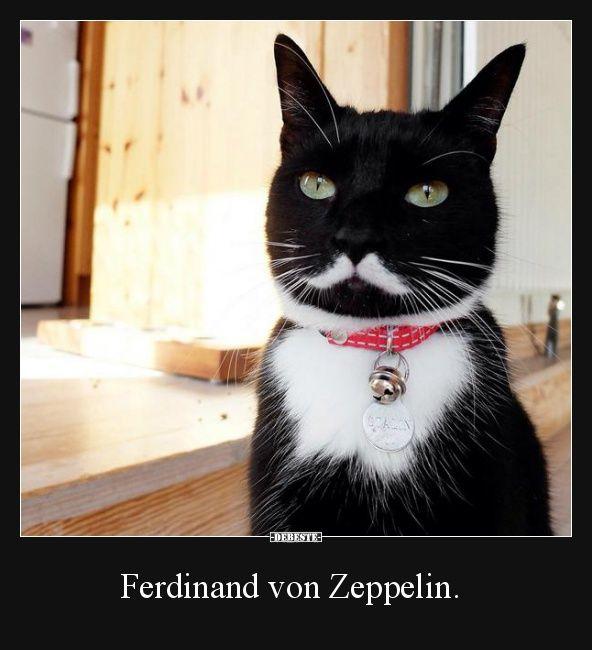 Ferdinand von Zeppelin. | Lustige Bilder, Sprüche, Witze, echt lustig
