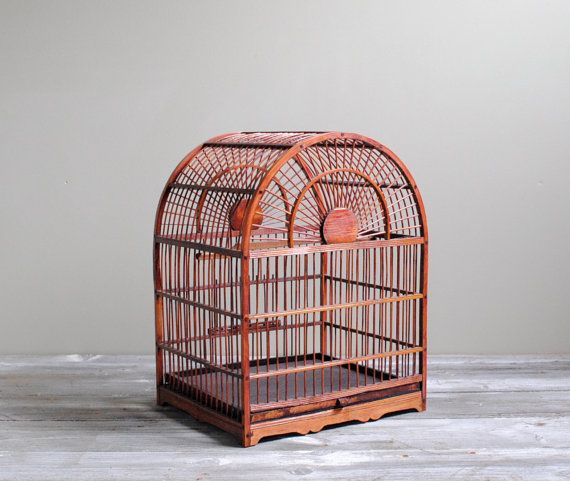 best 25 vintage bird cages ideas on pinterest antique. Black Bedroom Furniture Sets. Home Design Ideas