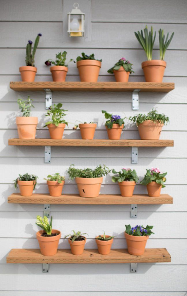 Diy Plant Shelving Wall Succulents Plant Wall Outdoor