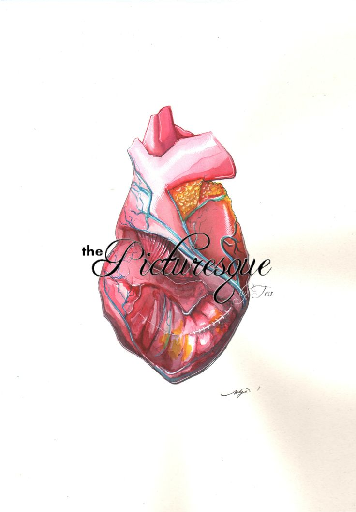 HEART 2014 aquarelle, marker by The Picturesque