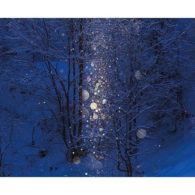 一度見たら忘れられない!寒くても見に行きたい日本の「雪景色」5選2016