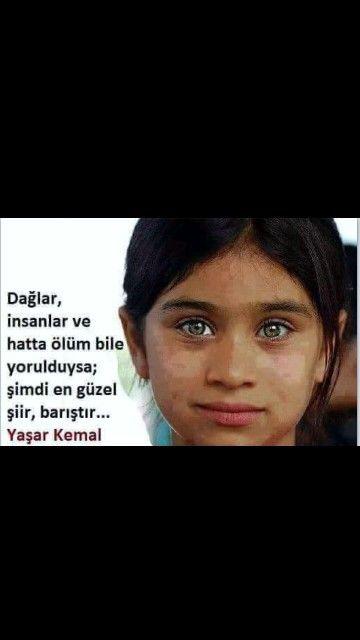 Dağlar, insanlar ve hatta ölüm bile yorulduysa; şimdi en güzel şiir, barıştır... Yaşar Kemal