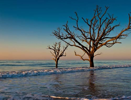 Botany Bay is a 4,687-acre wildlife preserve located on Edisto Island. The early history of Botany Bay can be traced back to two plantations — Bleak Hall Plantation and Sea Cloud Plantation.