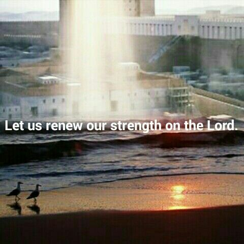 Let us renews our strength on the Lord.